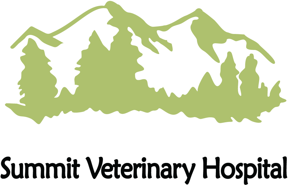 Summit Veterinary Hospital and Kennels